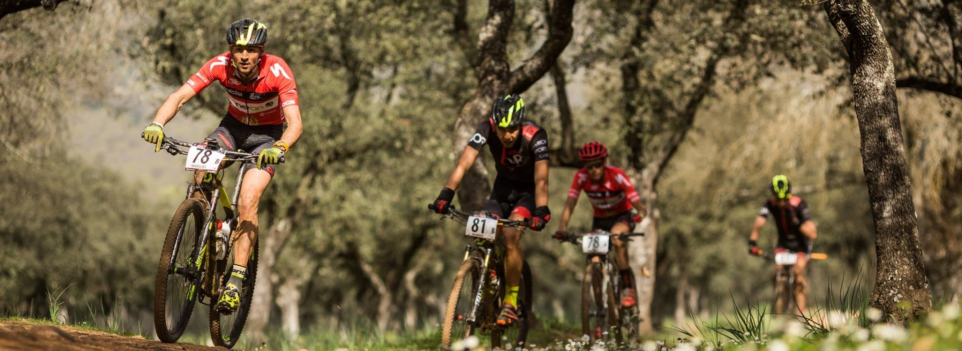 Jaén will host the start of Andalucía Bike Race presented by Caja Rural Jaén